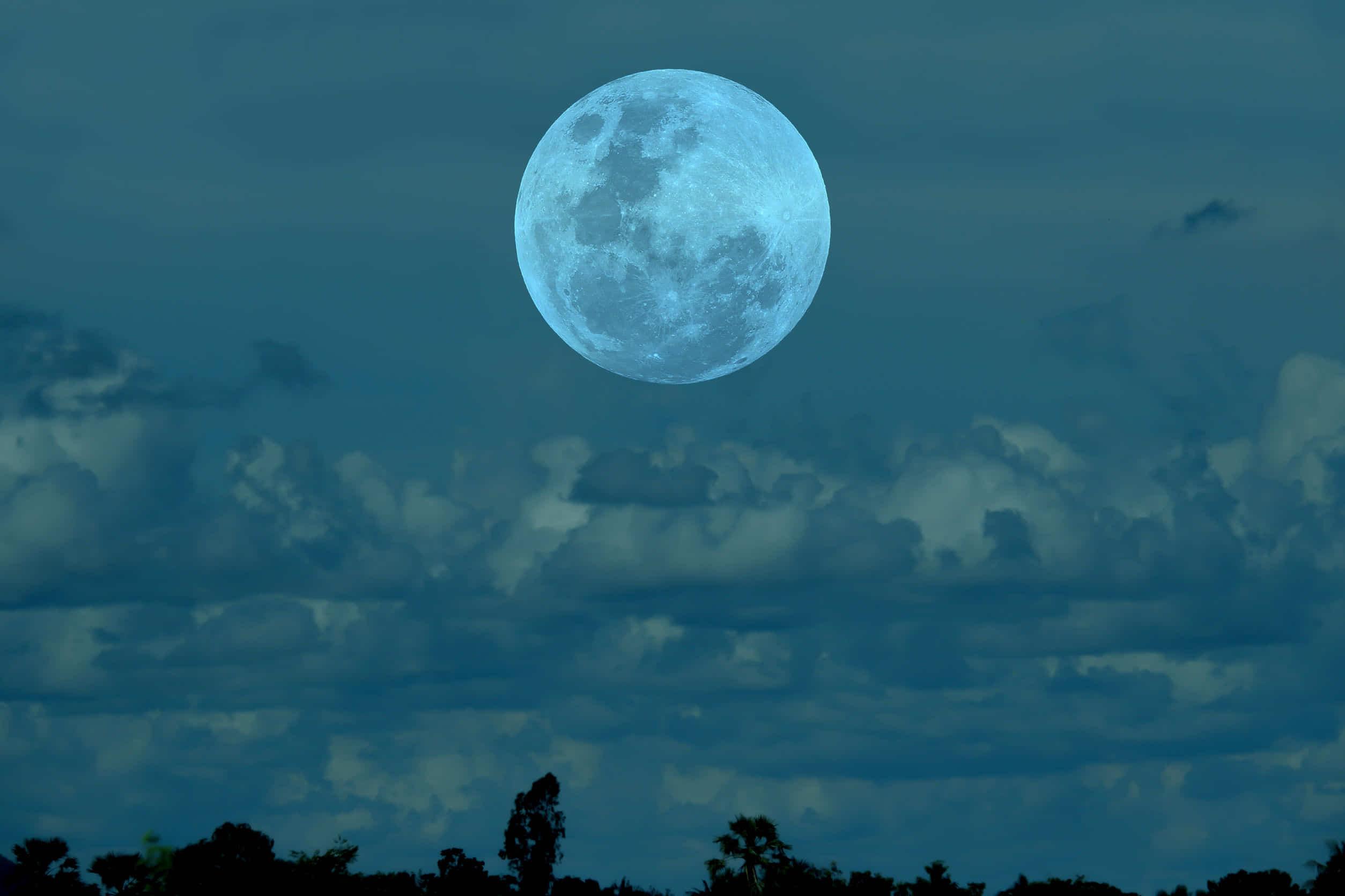 月うさぎ伝説の由来は?ちょっと悲しい昔話。猿や狐は世渡り上手?月見団子のレシピも